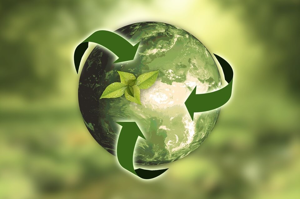 Have You Accounted For Sustainability In Your Business Strategy?